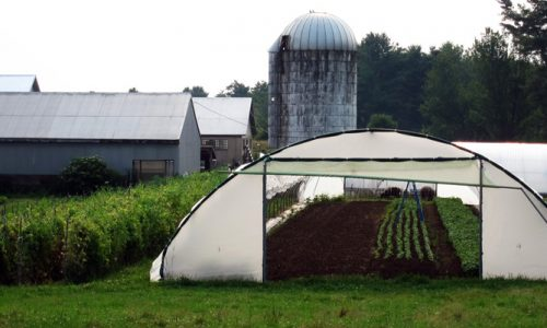 Maine: First in farms and in food insecurity