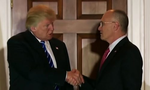 Maine Restaurant Association backs Trump's Labor nominee in letter to Collins