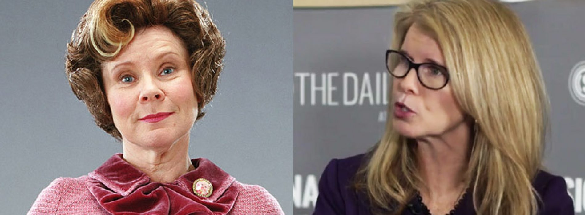 Is Mary Mayhew Dolores Umbridge and other important questions